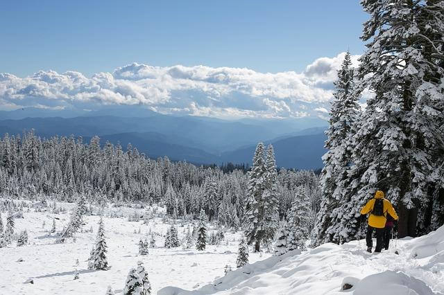 skiing-691236_640