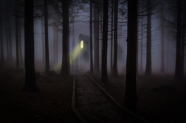 foggy-545838_640