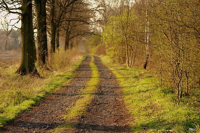 dirt-road-4103668_640